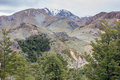 Snow capped mountains against a cloudy sky beech forest in the foreground mid canterbury woolshed creek Stock Images