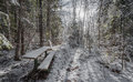 A snow covered bench in the woods along a walking trail. Royalty Free Stock Photo