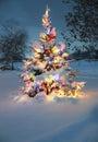 Sneh pokrytý vianočný stromček
