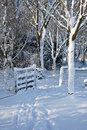 Snow Covered Gate In Wood