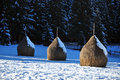Snow covered haystacks at winter in a bright day Stock Photos