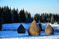 Snow covered haystacks at winter in a bright day Royalty Free Stock Photo