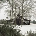 Snow covered landscape scene country and rural areas beauty in the heartland Royalty Free Stock Photo