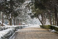 Snow covered ming tomb deity path the this photo was taken in zhongshan hill scenic area nanjing city jiangsu province china Stock Photos