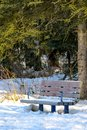 Snow Covered Park Bench in Winter Royalty Free Stock Photo