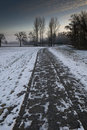 Snow covered path in winter Royalty Free Stock Images