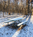 Snow covered picnic table in woods Royalty Free Stock Photo