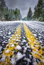 Snow-Covered Road in Yellowstone National Park Royalty Free Stock Photo