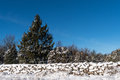 Snow covered stone wall and a blue sky Royalty Free Stock Photo