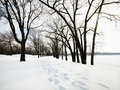 Snow covered trail. Stock Photos
