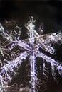 Snow Crystals Royalty Free Stock Photo