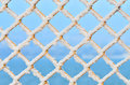 Snow on fence Royalty Free Stock Photo