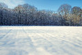 Snow field and forest Royalty Free Stock Photo