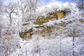 Snow flocked trees, limestone cliff Stock Images
