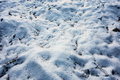 Snow ground Royalty Free Stock Photo
