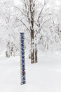 Snow height measurement Royalty Free Stock Photo