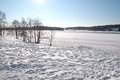 Snow lake landscape with animal or human tracks on a sunny day stockholm sweden Stock Image
