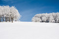 Snow landscape Stock Photography