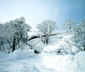 Snow landscape scene Royalty Free Stock Image