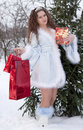 Snow Maiden with gifts Stock Photos