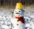 Snow man Stock Image