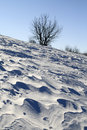 Snow plain blown by a wind erosion made ground on the Royalty Free Stock Image