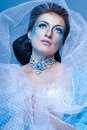 Snow Queen Stock Photos