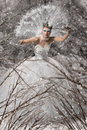 Snow queen beautiful in winter forest Stock Images