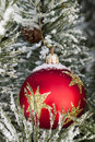 Snow on red christmas bauble Royalty Free Stock Photos
