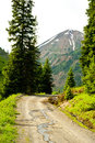 Snow runoff along a mountainous road. Stock Photography