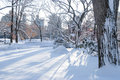 Snow shadows long winter after fresh in central park Royalty Free Stock Image