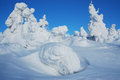 Snow stone and sculptures winter snowy from trees on top of the mountain Stock Photography