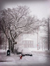 Snow Storm in the City Royalty Free Stock Images