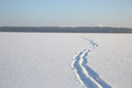 Snow on the surface of the frozen lake Royalty Free Stock Photo