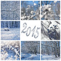 Snow and winter landscapes collage Stock Photo