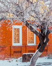Snow winter in town. Old rustic bricken house, orange wall and curtains the windows. Royalty Free Stock Photo
