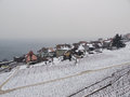 Snowcovered Rivaz in Lavaux during Winter Stock Photography