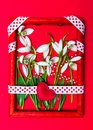 Snowdrop flowers in a red photo frame Royalty Free Stock Photo