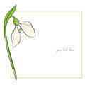 Snowdrop minimal card Royalty Free Stock Photo