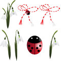 Snowdrop with trinket and ladybug Royalty Free Stock Photography