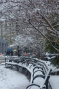 Snowed benches under trees during a snow storm in a park in new york city Royalty Free Stock Photos