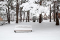 Snowfall in the city park snow with snow covered bench Royalty Free Stock Images
