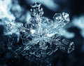 Snowflake close up with lots of detail Royalty Free Stock Image