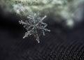 Snowflake falling down macro Royalty Free Stock Photo