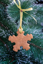 Snowflake gingerbread cookie on the Christmas Tree Stock Photo