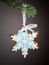 Snowflake gingerbread cookies Royalty Free Stock Photo
