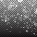 Snowflake vector. Falling Christmas snow fall isolated. Snowflakes decoration effect. Transparent snow flake pattern. Royalty Free Stock Photo