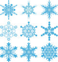 Snowflake vectors snowflakes on a white background Royalty Free Stock Photography