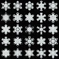 Snowflakes on black background white different good image for a christmas new year and winter themes Royalty Free Stock Image