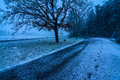Snowing meanwhile in a path in the south of germany Stock Images